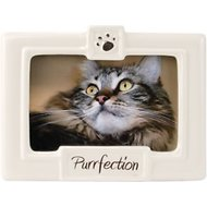 "Malden International Designs ""Purrfection"" Cat Picture Frame"