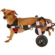 HandicappedPets Small 11-17 lbs Dog Wheelchair, Pink, 9-13 in