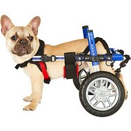 HandicappedPets Small 18 to 25 lbs Dog Wheelchair, 6-8 in, Blue