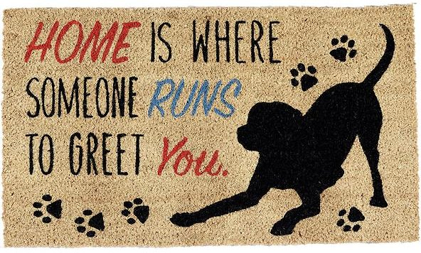 Design imports dog doormat chewy roll over image to zoom in m4hsunfo