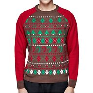 Blueberry Pet Christmas Themed Men's Sweater, Large