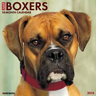 Just Boxers 2018 Wall Calendar