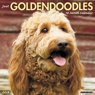 Just Goldendoodles 2018 Wall Calendar