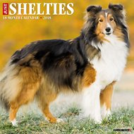 Just Shelties 2018 Wall Calendar