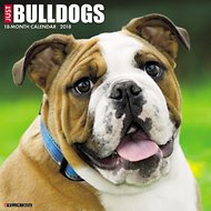 Just Bulldogs 2018 Wall Calendar