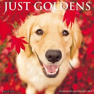 Just Goldens 2018 Wall Calendar