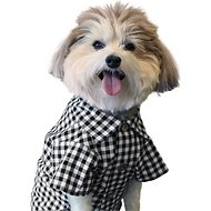 Dog Threads Classic Gingham Dog Shirt, Small