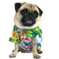 Dog Threads Hang Ten BBQ Dog Shirt, X-Small