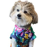 Dog Threads Rainforest BBQ Dog Shirt, X-Small