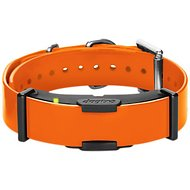 Dogtra Company ARC Dog Training Receiver Collar, Orange
