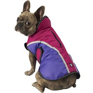 PetRageous Designs Calgary Dog Coat, Magenta, Medium