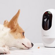 Pawbo+ Wi-Fi Interactive Pet Camera and Treat Dispenser
