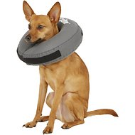 ZenPet ZenCollar Inflatable Recovery Dog & Cat Collar, Medium