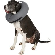 ZenPet ZenCollar Inflatable Recovery Dog & Cat Collar, XX-Large