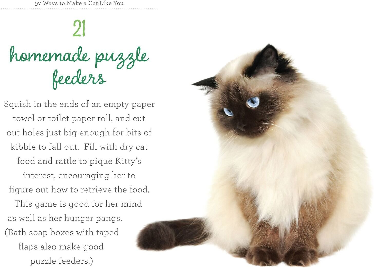 97 Ways to Make a Cat Like You Chewy