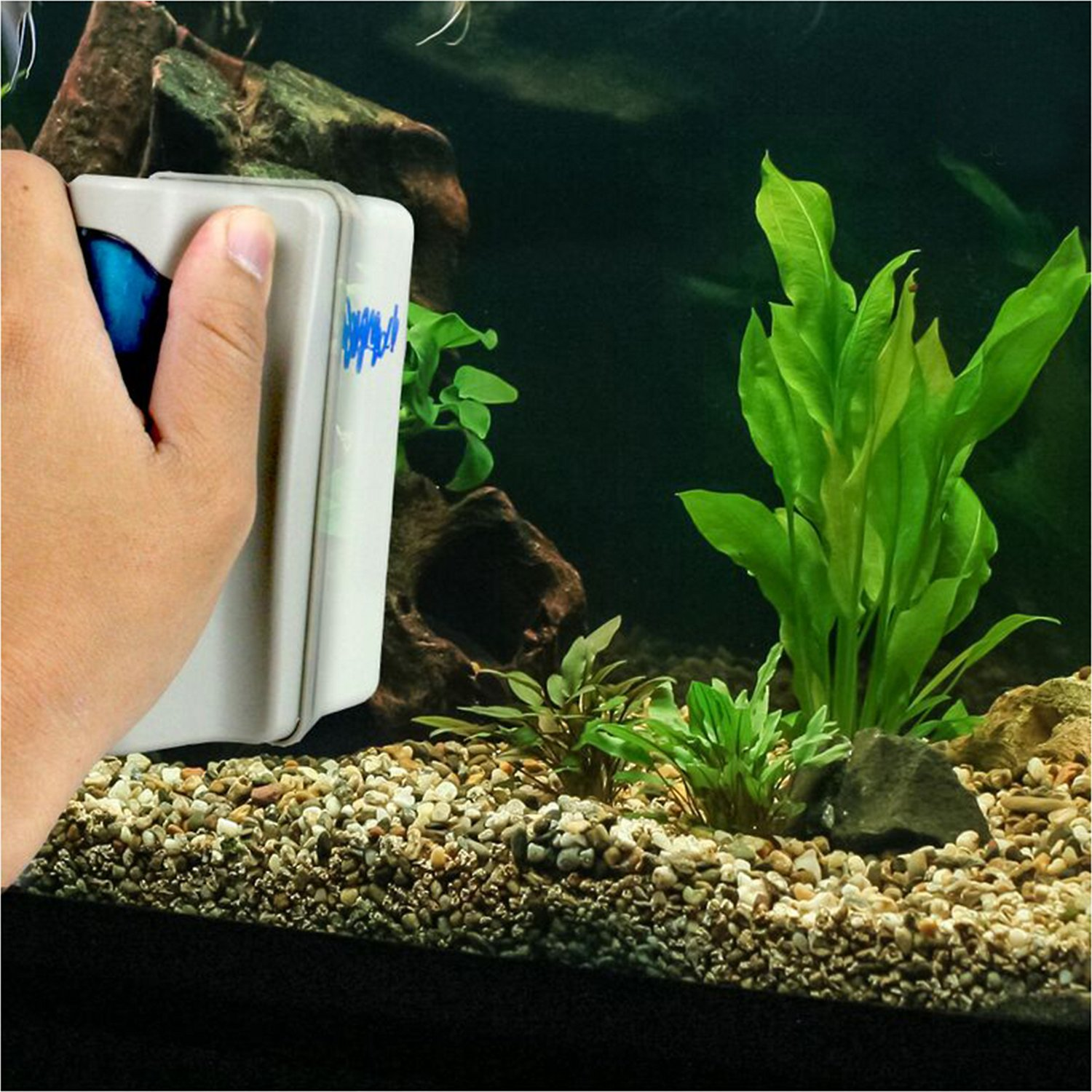 Pet magasin magnetic aquarium glass cleaner large for Cleaning algae from fish tank