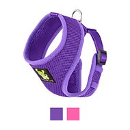 EcoBark Maximum Comfort Dog Harness, Purple, Small