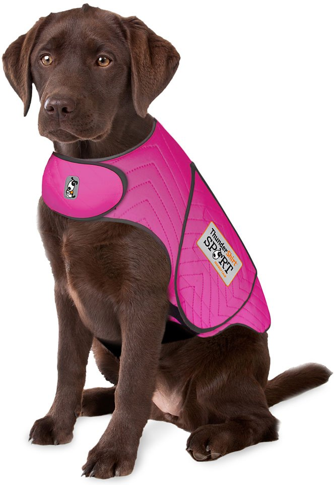 Thundershirt Sport Anxiety Calming Solution For Dogs