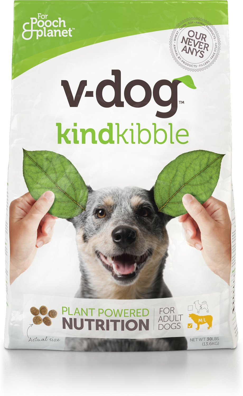 best dog food for italian greyhounds