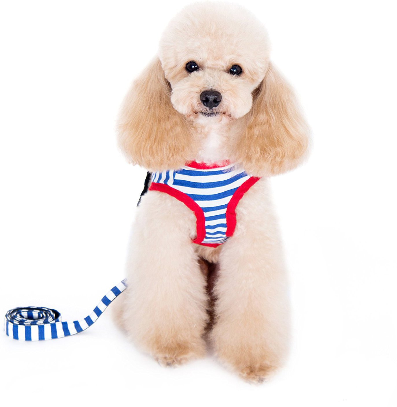 Alfie Pet Vince Sailor Harness Dog