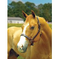 Perri's Leather Turnout Horse Halter, Havana