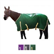 Derby Originals 600D Deluxe Waterproof Turnout Winter Horse Blanket, Green/Tan, 75-in