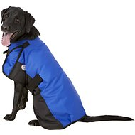 Derby Originals 600D Waterproof Dog Blanket Coat, Royal Blue/Black, 26.5-in