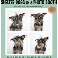 Andrews McMeel Shelter Dogs 2018 Wall Calendar