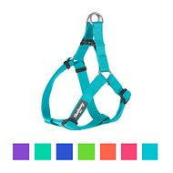 Blueberry Pet Classic Solid Dog Harness, Medium, Turquoise