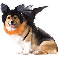 California Costumes Bat Dog Costume, XSmall