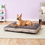 Better World Pets Waterproof Memory Foam Orthopedic Dog Bed, Rave Green, X-Large