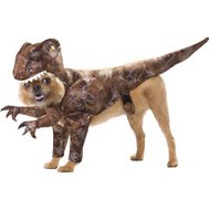 California Costumes Raptor Dinosaur Dog Costume, Large