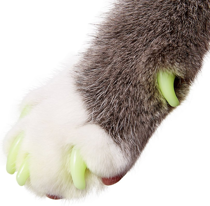 Purrdy Paws Soft Cat Nail Caps, 40 count, Medium, Ultra Glow in the ...