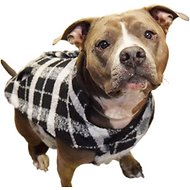 Fab Dog Plaid Boucle Dog Coat, Black/White, 20""