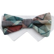 Tail Trends Day of The Week Soft Plaid Dog & Cat Bow Tie Collar Slider, Barkday, Small