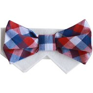 Tail Trends Day of The Week Soft Plaid Dog & Cat Bow Tie Collar Slider, Wednesday, Large