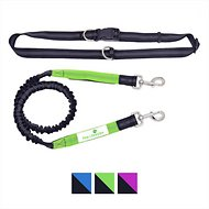 Paw Lifestyles Bungee Hands Free Running Dog Leash, Black/Green