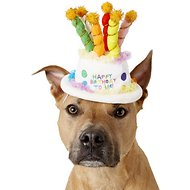 Rubie's Costume Company Birthday Cake Dog & Cat Hat, Small/Medium