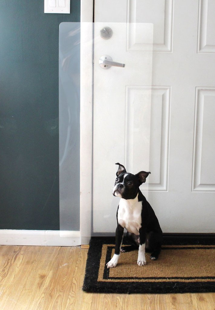 Frame and Wall the Ultimate Pet Scratch Shield Heavy Duty Clawguard® Door