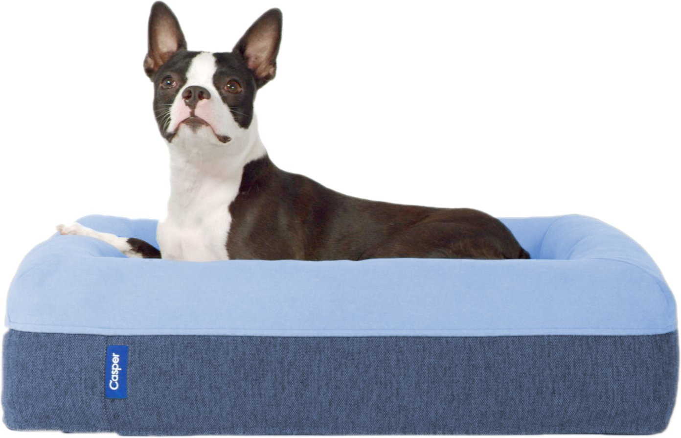 metal hellow bedding dog ideas christmas indestructible noten ga smart animals dane xl bed crate flea heavy about crates in preferential beds amazon to duty on