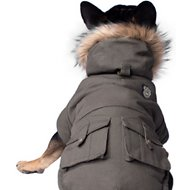 Canada Pooch Alaskan Army Dog Parka, Army Green, 18