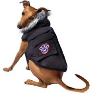 Canada Pooch Everest Explorer Dog Jacket, 8, Black