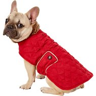 Zack & Zoey Elements Derby Quilted Dog Coat, Medium
