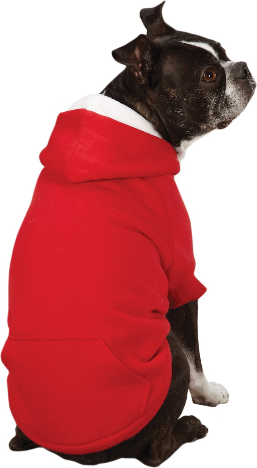 Dog in a hoodie