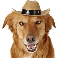 Rubie's Costume Company Brown Cowboy Hat Dog & Cat Costume, Medium/Large