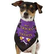 Rubie's Costume Company Trick Or Treat Bandana Dog & Cat Costume, Small/Medium