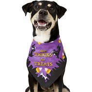 Rubie's Costume Company Trick Or Treat Bandana Dog & Cat Costume, Medium/Large