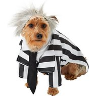 Rubie's Costume Company Beetlejuice Dog & Cat Costume, Medium
