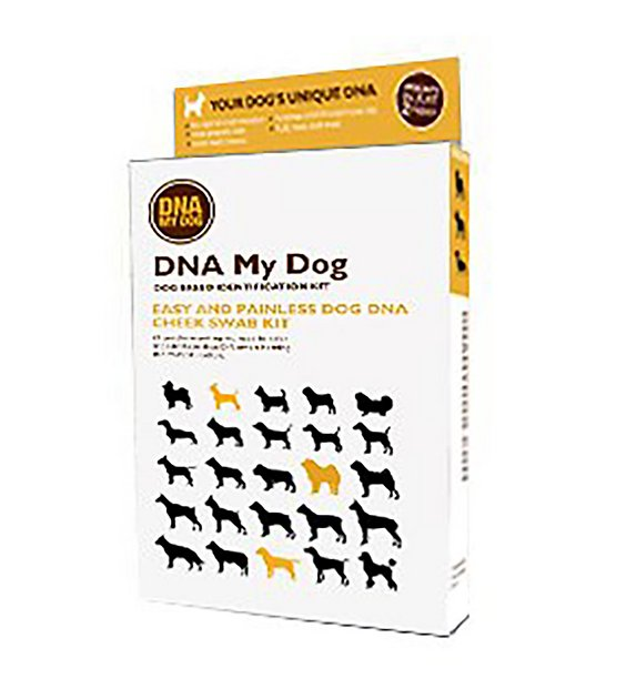 Dna My Dog Breed Identification Test Kit Chewy Com