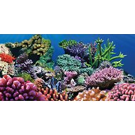 Sporn Static Cling Coral Aquarium Background, Medium
